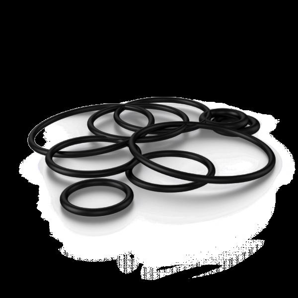 Exvape - Expromizer V5 O-Ring Kit
